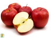 Cây táo tây đỏ